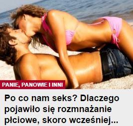 poCoNamSeks